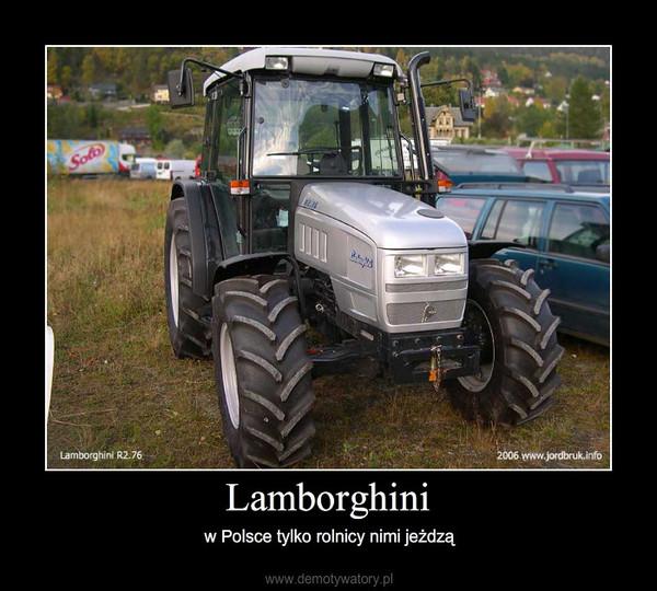 Lamborghini – w Polsce tylko rolnicy nimi jeżdzą