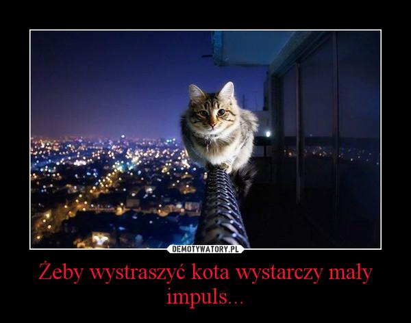 Żeby wystraszyć kota wystarczy mały impuls... –
