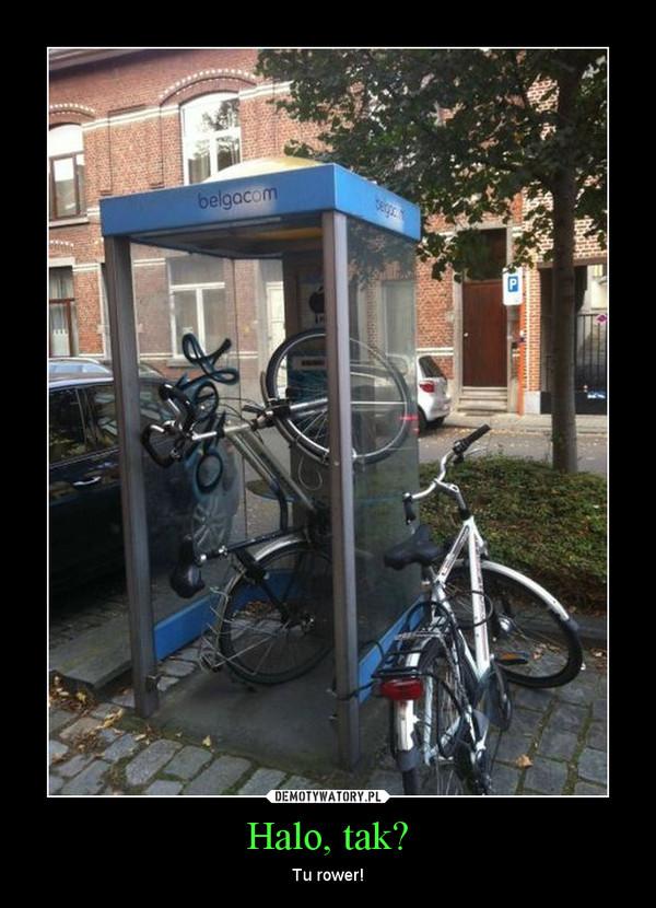 Halo, tak? – Tu rower!
