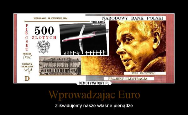 Wprowadzając Euro – zlikwidujemy nasze własne pienądze