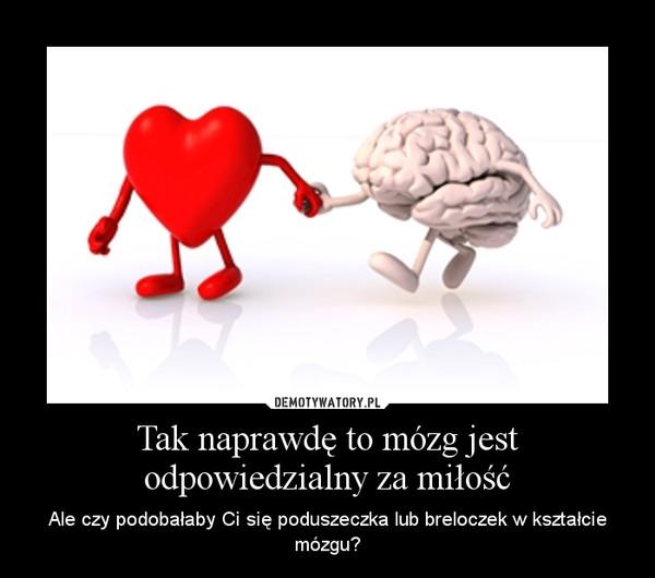 Tak naprawdę to mózg jest odpowiedzialny za miłość – Ale czy podobałaby Ci się poduszeczka lub breloczek w kształcie mózgu?