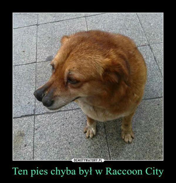 Ten pies chyba był w Raccoon City –