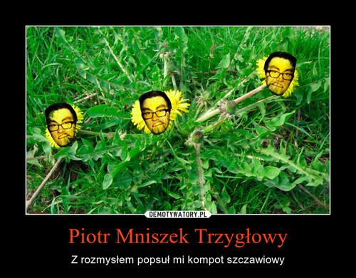 Piotr Mniszek Trzygłowy