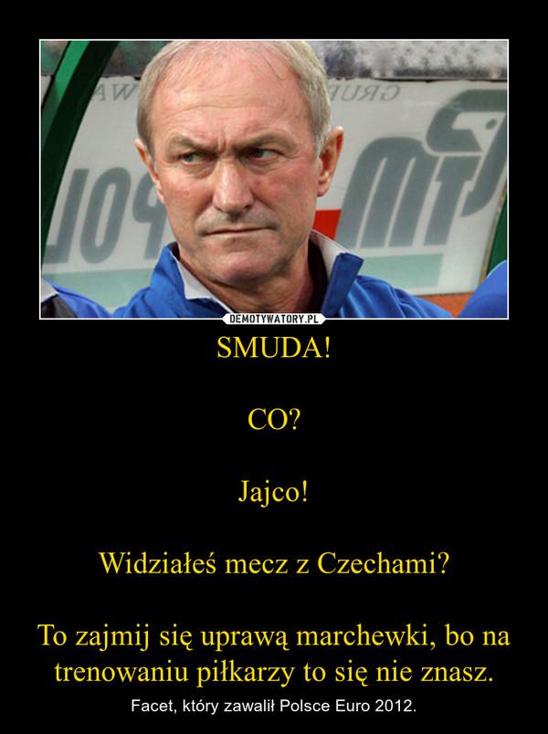 SMUDA!CO?Jajco!Widziałeś mecz z Czechami?To zajmij się uprawą marchewki, bo na trenowaniu piłkarzy to się nie znasz. – Facet, który zawalił Polsce Euro 2012.