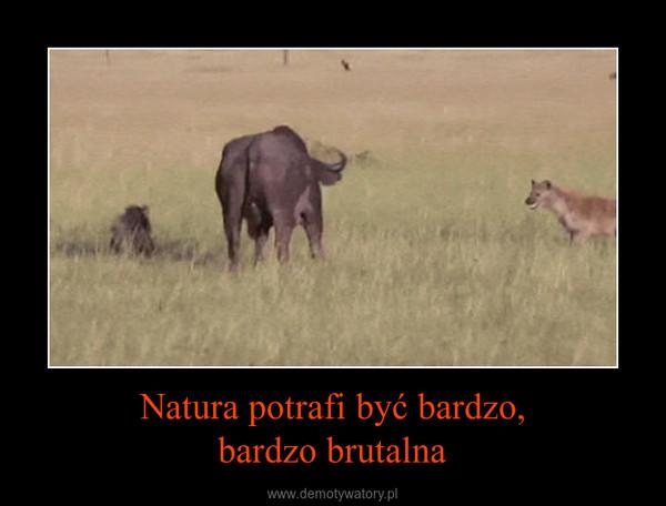 Natura potrafi być bardzo,bardzo brutalna –