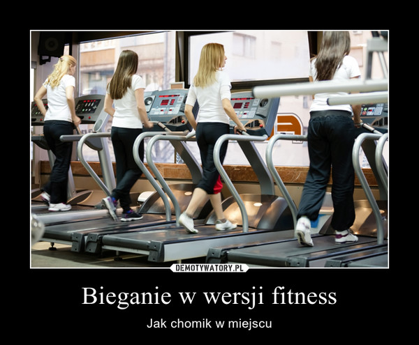 Bieganie w wersji fitness – Jak chomik w miejscu