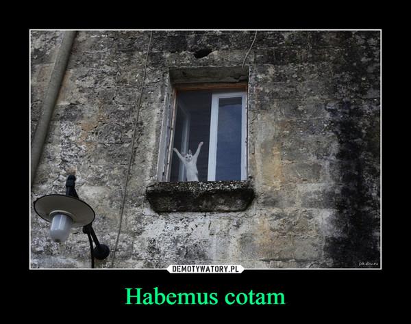 Habemus cotam –