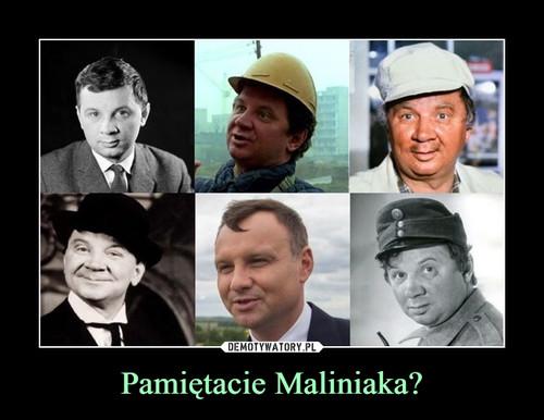 Pamiętacie Maliniaka?