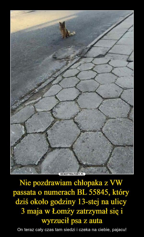 Nie pozdrawiam chłopaka z VW passata o numerach BL 55845, który dziś około godziny 13-stej na ulicy 3 maja w Łomży zatrzymał się i wyrzucił psa z auta – On teraz cały czas tam siedzi i czeka na ciebie, pajacu!