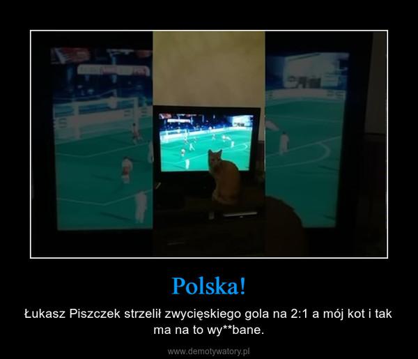 Polska! – Łukasz Piszczek strzelił zwycięskiego gola na 2:1 a mój kot i tak ma na to wy**bane.