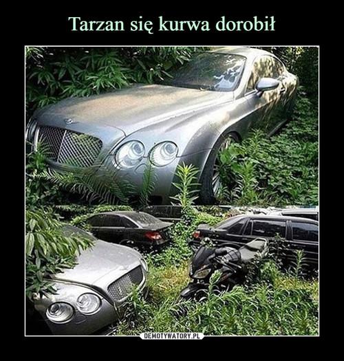 Tarzan się kurwa dorobił