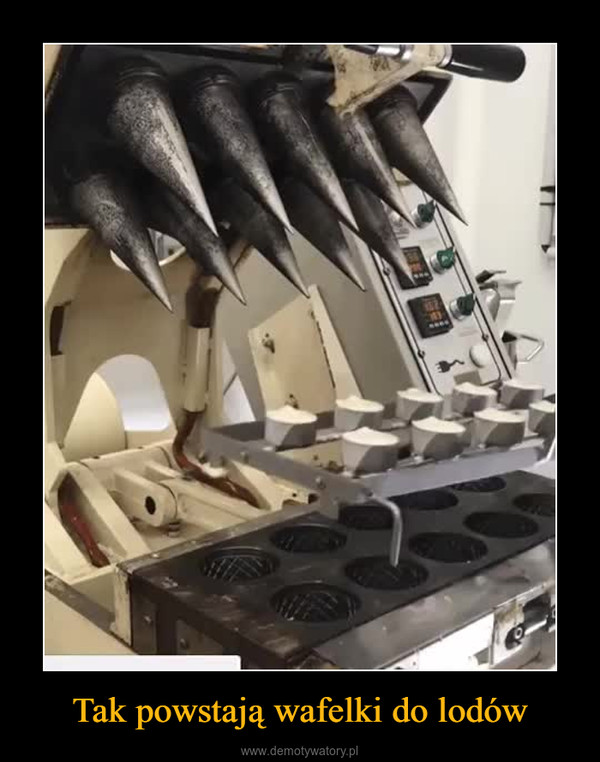 Tak powstają wafelki do lodów –