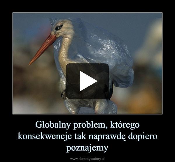 Globalny problem, którego konsekwencje tak naprawdę dopiero poznajemy –