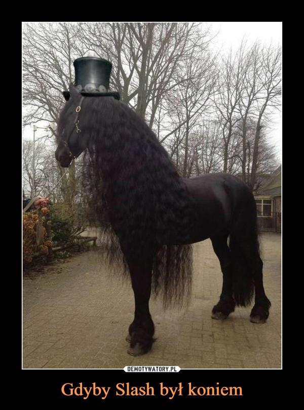 Gdyby Slash był koniem –