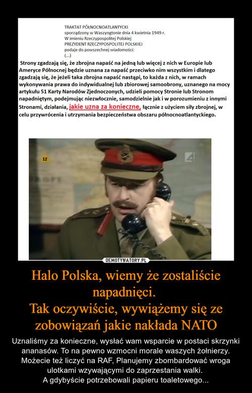 Halo Polska, wiemy że zostaliście napadnięci.  Tak oczywiście, wywiążemy się ze zobowiązań jakie nakłada NATO