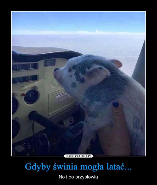 Gdyby świnia mogła latać... – No i po przysłowiu
