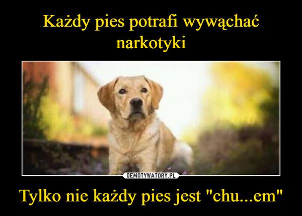 """Tylko nie każdy pies jest """"chu...em"""" –"""