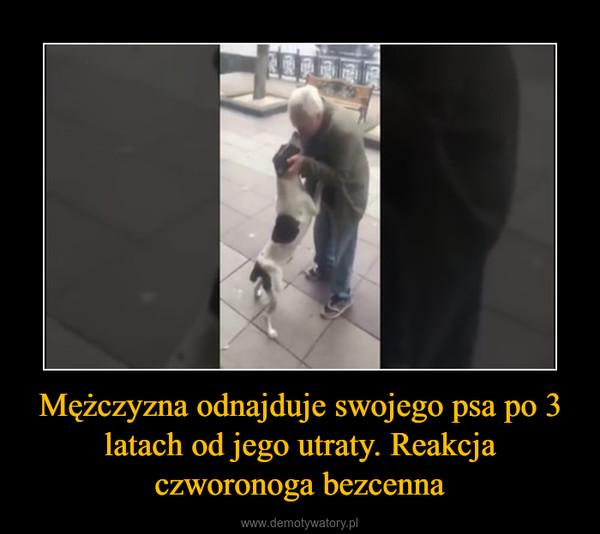 Mężczyzna odnajduje swojego psa po 3 latach od jego utraty. Reakcja czworonoga bezcenna –