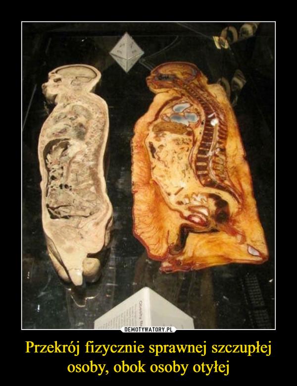 Przekrój fizycznie sprawnej szczupłej osoby, obok osoby otyłej –