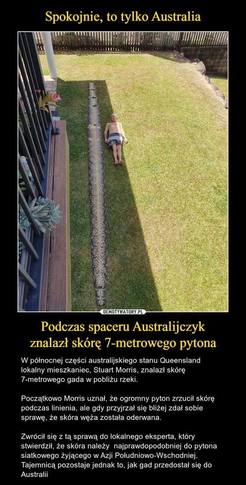 Spokojnie, to tylko Australia Podczas spaceru Australijczyk znalazł skórę 7-metrowego pytona