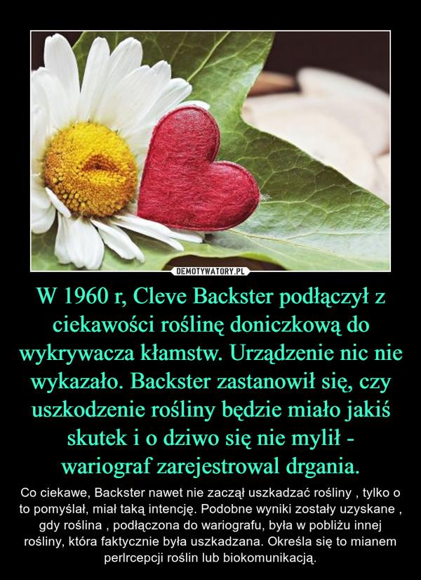 W 1960 r, Cleve Backster podłączył z ciekawości roślinę doniczkową do wykrywacza kłamstw. Urządzenie nic nie wykazało. Backster zastanowił się, czy uszkodzenie rośliny będzie miało jakiś skutek i o dziwo się nie mylił - wariograf zarejestrowal drgania. – Co ciekawe, Backster nawet nie zaczął uszkadzać rośliny , tylko o to pomyślał, miał taką intencję. Podobne wyniki zostały uzyskane , gdy roślina , podłączona do wariografu, była w pobliżu innej rośliny, która faktycznie była uszkadzana. Określa się to mianem perlrcepcji roślinlubbiokomunikacją.