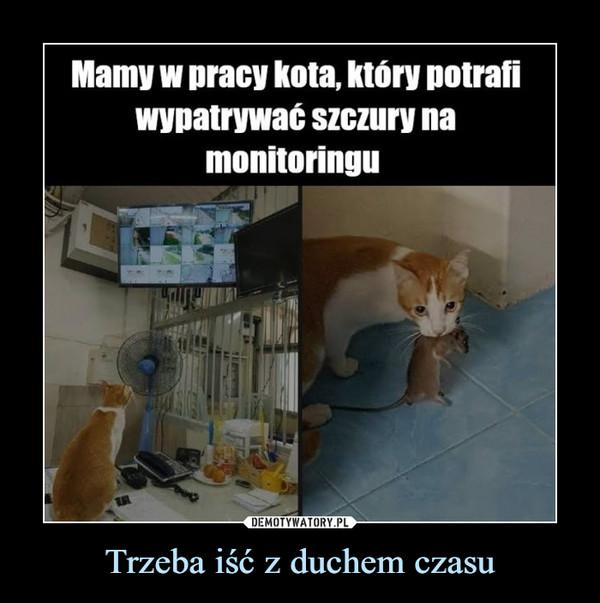 Trzeba iść z duchem czasu –  Mamy w pracy kota, który potrafiwypatrywać szczury namonitoringu