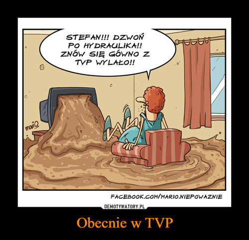 Obecnie w TVP