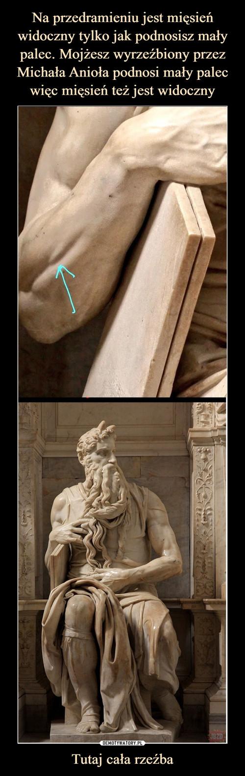 Na przedramieniu jest mięsień widoczny tylko jak podnosisz mały palec. Mojżesz wyrzeźbiony przez Michała Anioła podnosi mały palec więc mięsień też jest widoczny Tutaj cała rzeźba