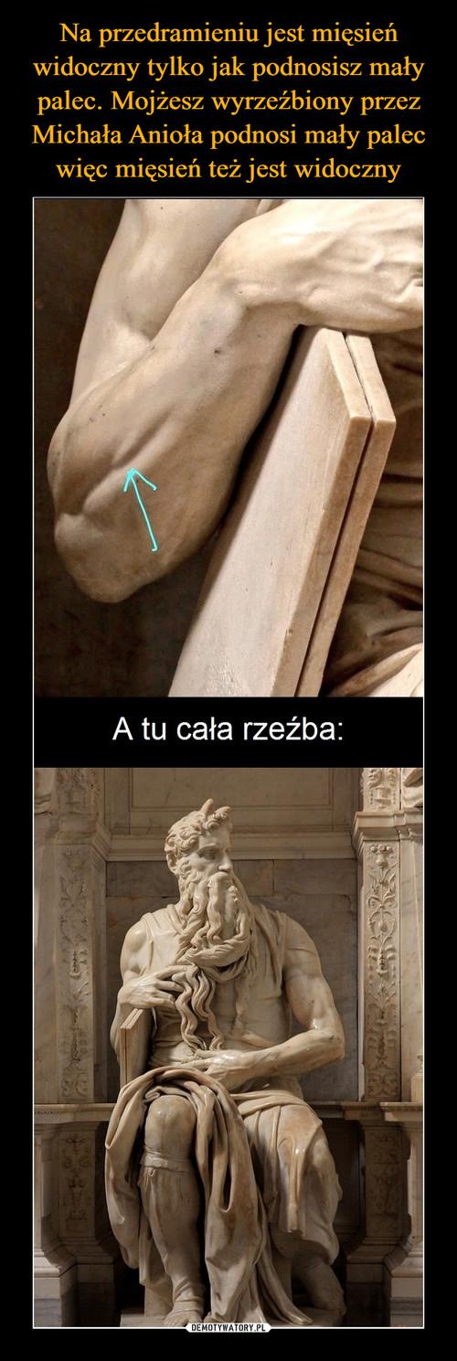 Na przedramieniu jest mięsień widoczny tylko jak podnosisz mały palec. Mojżesz wyrzeźbiony przez Michała Anioła podnosi mały palec więc mięsień też jest widoczny