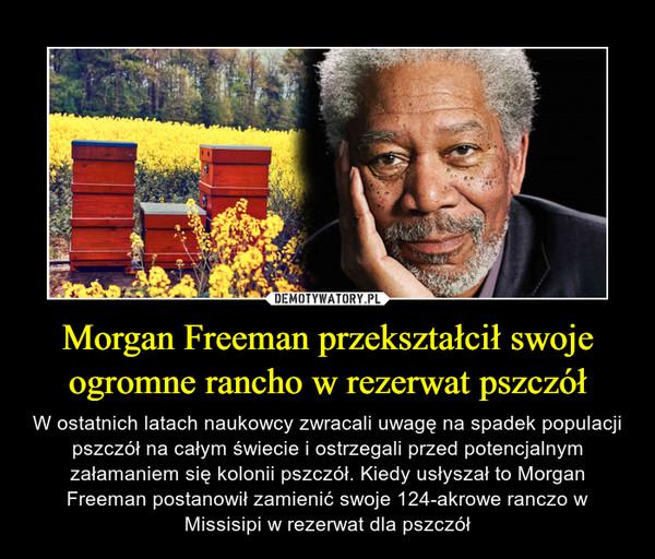 Morgan Freeman przekształcił swoje ogromne rancho w rezerwat pszczół – W ostatnich latach naukowcy zwracali uwagę na spadek populacji pszczół na całym świecie i ostrzegali przed potencjalnym załamaniem się kolonii pszczół. Kiedy usłyszał to Morgan Freeman postanowił zamienić swoje 124-akrowe ranczo w Missisipi w rezerwat dla pszczół