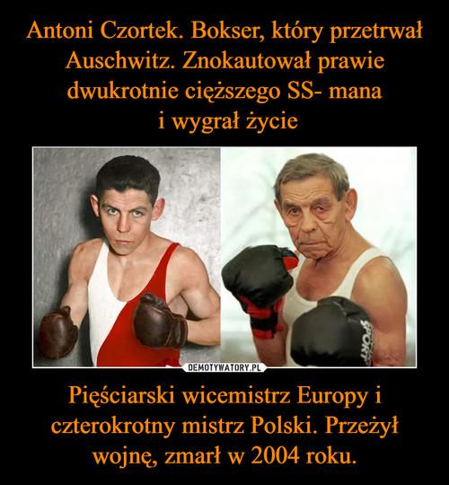 Antoni Czortek. Bokser, który przetrwał Auschwitz. Znokautował prawie dwukrotnie cięższego SS- mana  i wygrał życie Pięściarski wicemistrz Europy i czterokrotny mistrz Polski. Przeżył wojnę, zmarł w 2004 roku.