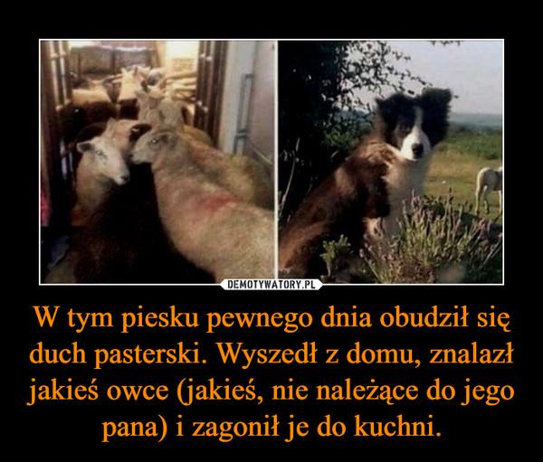 W tym piesku pewnego dnia obudził się duch pasterski. Wyszedł z domu, znalazł jakieś owce (jakieś, nie należące do jego pana) i zagonił je do kuchni. –
