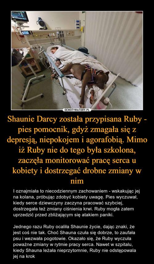 Shaunie Darcy została przypisana Ruby - pies pomocnik, gdyż zmagała się z depresją, niepokojem i agorafobią. Mimo iż Ruby nie do tego była szkolona, zaczęła monitorować pracę serca u kobiety i dostrzegać drobne zmiany w nim
