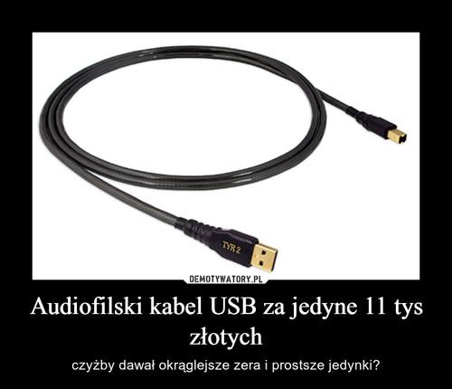 Audiofilski kabel USB za jedyne 11 tys złotych