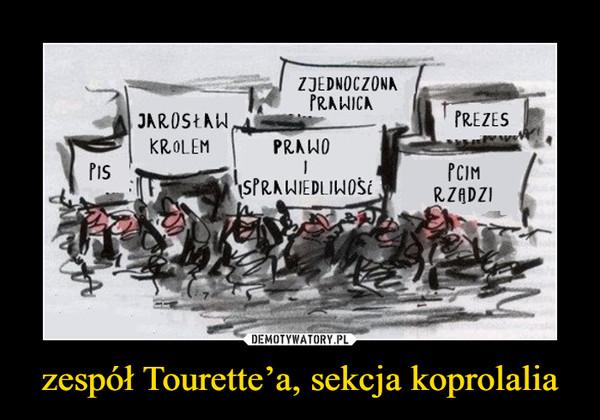 zespół Tourette'a, sekcja koprolalia –
