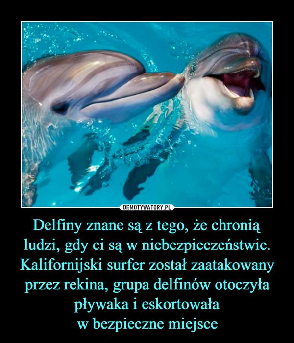 Delfiny znane są z tego, że chroniąludzi, gdy ci są w niebezpieczeństwie. Kalifornijski surfer został zaatakowany przez rekina, grupa delfinów otoczyła pływaka i eskortowaław bezpieczne miejsce –