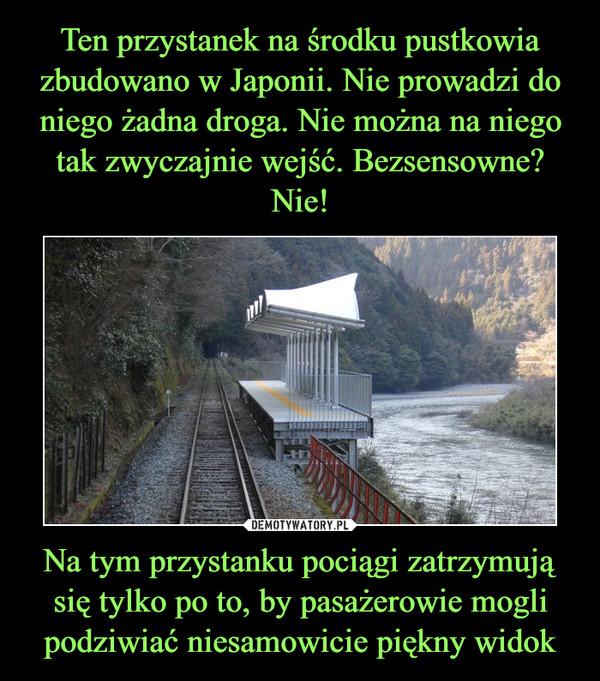 Na tym przystanku pociągi zatrzymują się tylko po to, by pasażerowie mogli podziwiać niesamowicie piękny widok –