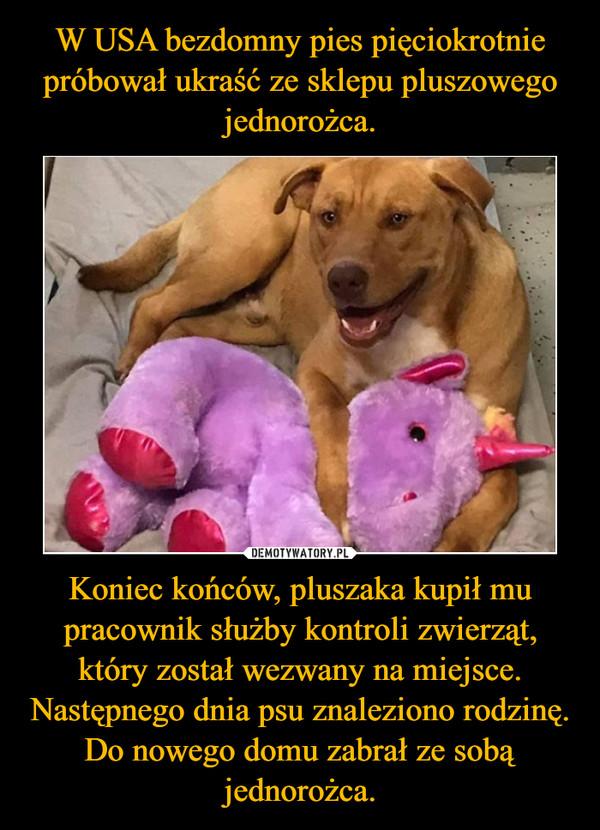 Koniec końców, pluszaka kupił mu pracownik służby kontroli zwierząt, który został wezwany na miejsce. Następnego dnia psu znaleziono rodzinę. Do nowego domu zabrał ze sobą jednorożca. –
