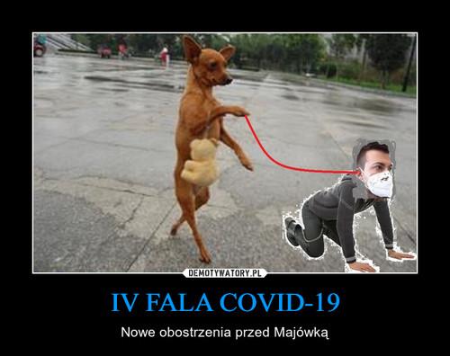 IV FALA COVID-19
