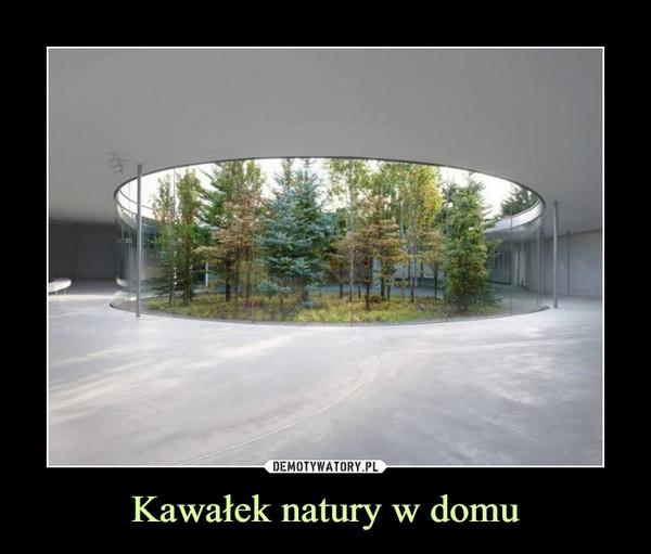 Kawałek natury w domu –