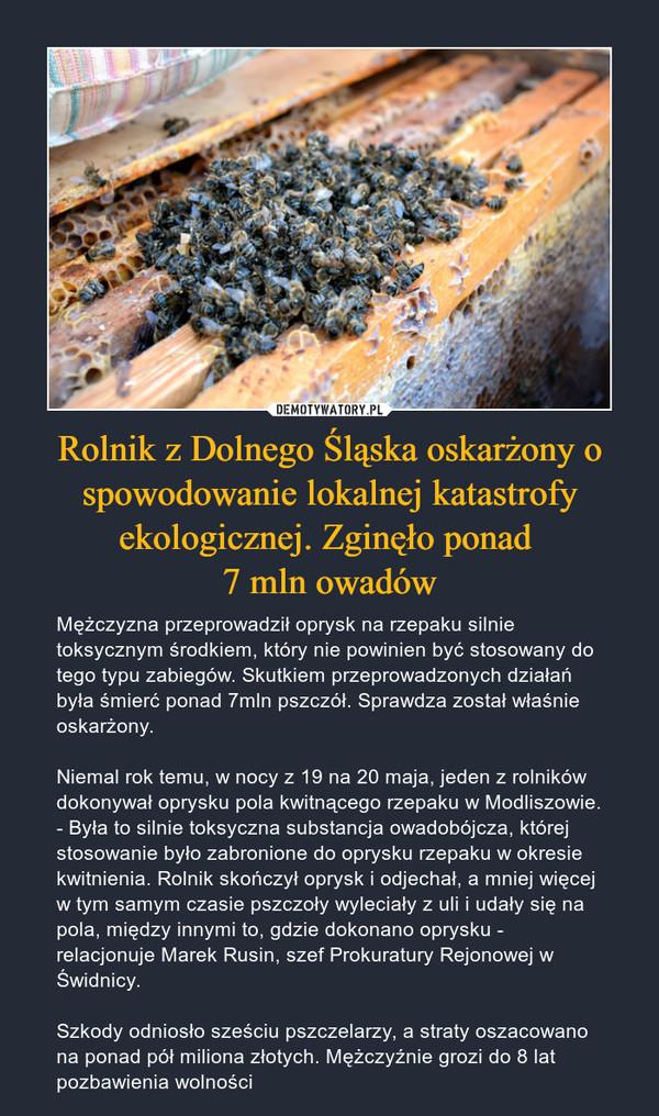 Rolnik z Dolnego Śląska oskarżony o spowodowanie lokalnej katastrofy ekologicznej. Zginęło ponad 7 mln owadów – Mężczyzna przeprowadził oprysk na rzepaku silnie toksycznym środkiem, który nie powinien być stosowany do tego typu zabiegów. Skutkiem przeprowadzonych działań była śmierć ponad 7mln pszczół. Sprawdza został właśnie oskarżony.Niemal rok temu, w nocy z 19 na 20 maja, jeden z rolników dokonywał oprysku pola kwitnącego rzepaku w Modliszowie. - Była to silnie toksyczna substancja owadobójcza, której stosowanie było zabronione do oprysku rzepaku w okresie kwitnienia. Rolnik skończył oprysk i odjechał, a mniej więcej w tym samym czasie pszczoły wyleciały z uli i udały się na pola, między innymi to, gdzie dokonano oprysku - relacjonuje Marek Rusin, szef Prokuratury Rejonowej w Świdnicy.Szkody odniosło sześciu pszczelarzy, a straty oszacowano na ponad pół miliona złotych. Mężczyźnie grozi do 8 lat pozbawienia wolności