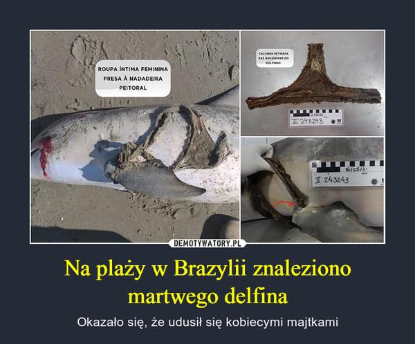Na plaży w Brazylii znaleziono martwego delfina – Okazało się, że udusił się kobiecymi majtkami