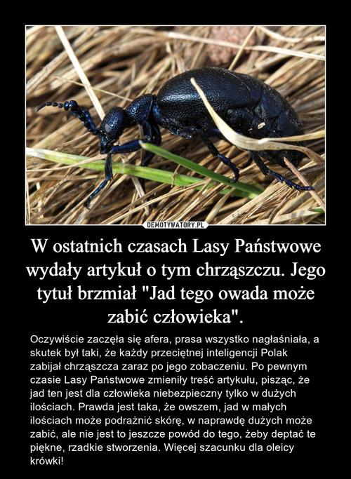"""W ostatnich czasach Lasy Państwowe wydały artykuł o tym chrząszczu. Jego tytuł brzmiał """"Jad tego owada może zabić człowieka""""."""