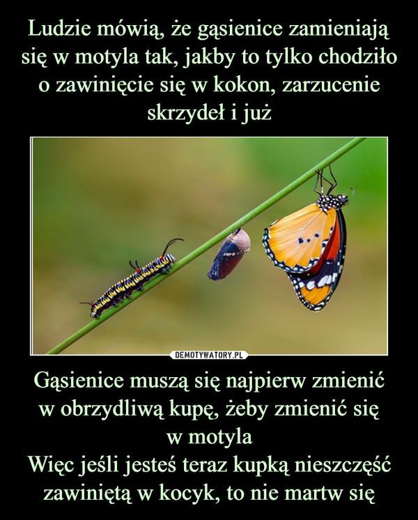 Gąsienice muszą się najpierw zmienićw obrzydliwą kupę, żeby zmienić sięw motylaWięc jeśli jesteś teraz kupką nieszczęść zawiniętą w kocyk, to nie martw się –