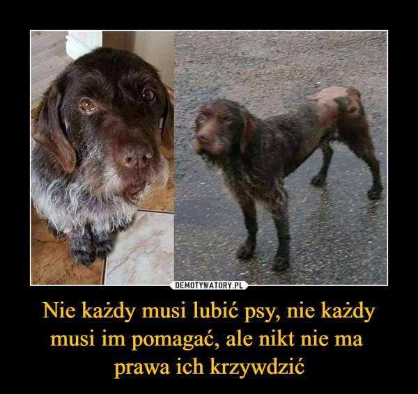 Nie każdy musi lubić psy, nie każdy musi im pomagać, ale nikt nie ma prawa ich krzywdzić –