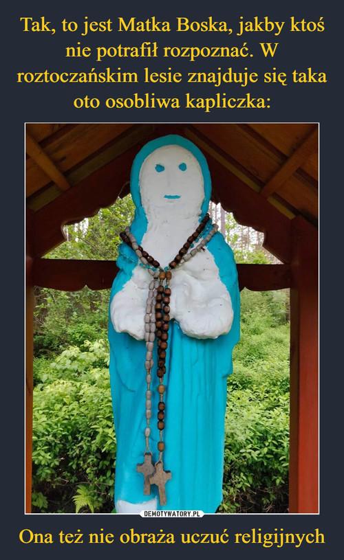 Tak, to jest Matka Boska, jakby ktoś nie potrafił rozpoznać. W roztoczańskim lesie znajduje się taka oto osobliwa kapliczka: Ona też nie obraża uczuć religijnych