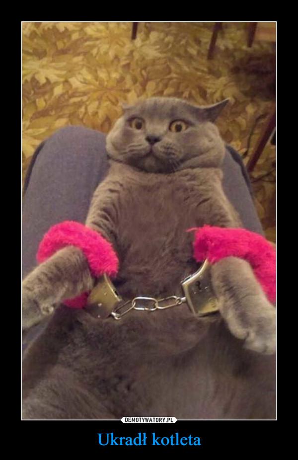 Ukradł kotleta –