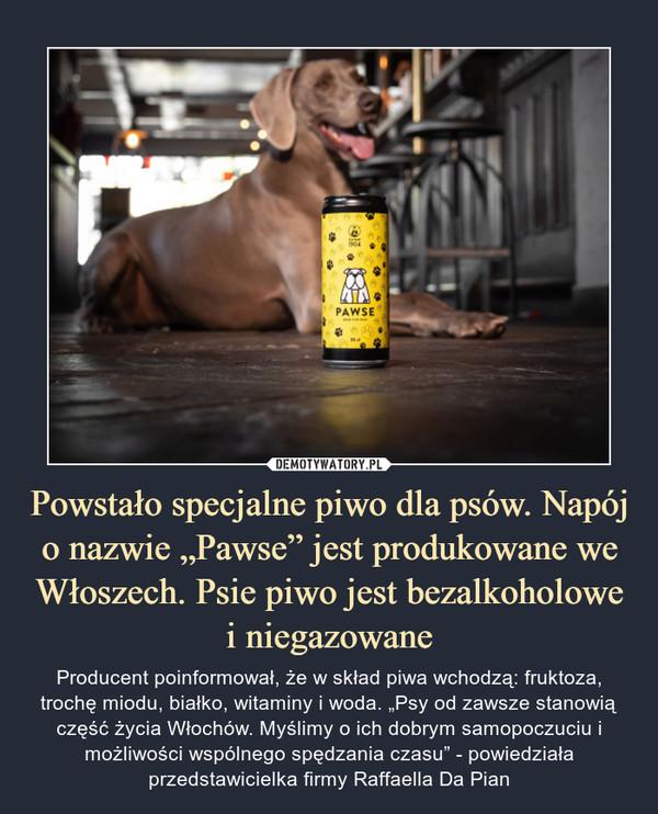 """Powstało specjalne piwo dla psów. Napój o nazwie """"Pawse"""" jest produkowane we Włoszech. Psie piwo jest bezalkoholowe i niegazowane – Producent poinformował, że w skład piwa wchodzą: fruktoza, trochę miodu, białko, witaminy i woda. """"Psy od zawsze stanowią część życia Włochów. Myślimy o ich dobrym samopoczuciu i możliwości wspólnego spędzania czasu"""" - powiedziała przedstawicielka firmy Raffaella Da Pian"""