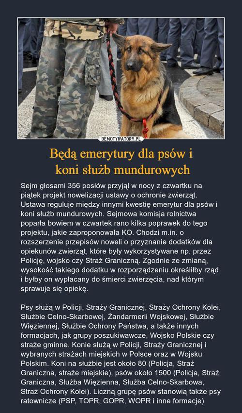Będą emerytury dla psów i  koni służb mundurowych