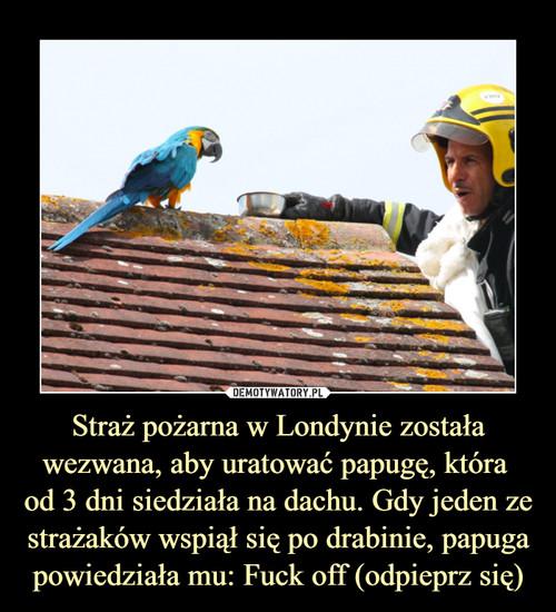 Straż pożarna w Londynie została wezwana, aby uratować papugę, która  od 3 dni siedziała na dachu. Gdy jeden ze strażaków wspiął się po drabinie, papuga powiedziała mu: Fuck off (odpieprz się)
